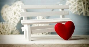 Red Heart White Bench Wallpapers