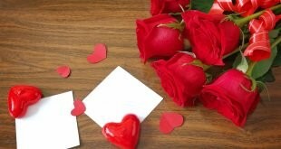Red Love Heart and Flowers Wallpapers
