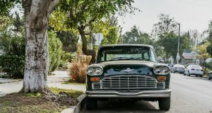 Green and White Vintage Car Beside Green Leaved Tree Wallpaper